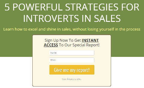 Special Report: Powerful Strategies for Introverts in Sales by Alen Mayer
